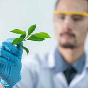 Почвен и листен анализ